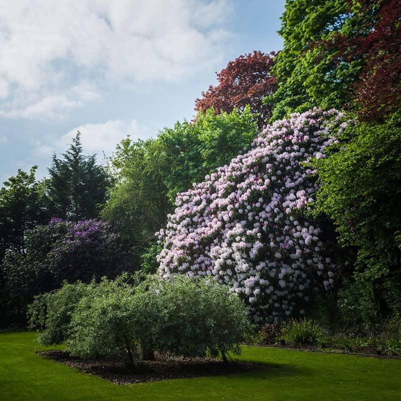 Gardens for wedding near Blairgowrie